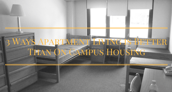 Gray dorm room